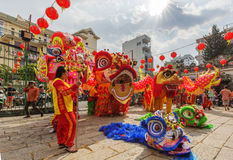 Southern Lion Dance at Eye Opening ceremony, Lady Thien Hau pagoda, Vietnam Stock Images