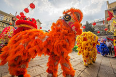 Southern Lion Dance at Eye Opening ceremony, Lady Thien Hau pagoda, Vietnam Stock Image