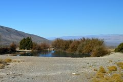 Southern Nevada Rural Desert Pond royalty free stock photo