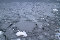 Southern ocean autumn overcast day covered with ice Royalty Free Stock Images