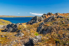 Southern shore of Novaya Zemlya Stock Images