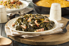 Southern Style Collard Greens Stock Image