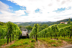 Southern Styria Austria - Grape vines: Tractor in steep vineyard Stock Image