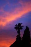 Southern sunset Stock Photography
