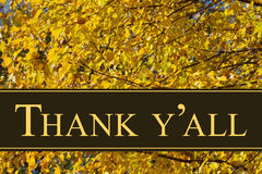 Southern Thank You Greeting. Some fall leaves with text Thanks Y`all Royalty Free Stock Image