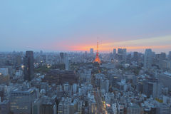 Southern Tokyo skyline as seen from World Trade Center Royalty Free Stock Photo