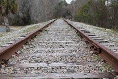 Southern Tracks. Train tracks through southern South Carolina Royalty Free Stock Image
