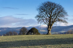 Southern Uplands Royalty Free Stock Photos
