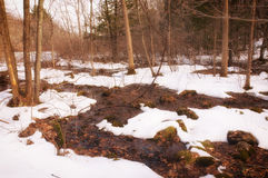 Southford Falls winter. A small brook running through snow covered ground at Southford Falls in Oxford Connecticut in the winter in New England Royalty Free Stock Photo