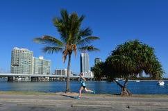 Southport horisont - Gold Coast Queensland Australien Fotografering för Bildbyråer