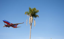Southwest Airlines. A Southwest Airlines plane coming in for a landing at San Diego Airport as it flys by a palm tree stock photos