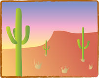 Southwest Cacti. Three saguaro cacti in an American Southwest landscape royalty free illustration