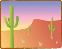 Southwest Cacti. Three saguaro cacti in an American Southwest landscape Stock Photos