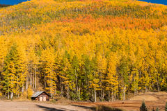 Southwest Colorado Fall Landscape Stock Images
