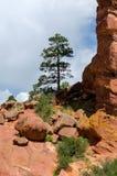 Southwest landcape in colorado Royalty Free Stock Photo