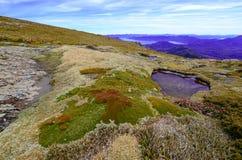 Southwest National Park Tasmania, Australia Stock Photos