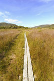 Southwest National Park Tasmania, Australia Stock Photography