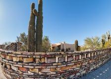 Southwestern architecture details. Southwestern design, unusual fencing and Saguaro Cactus Stock Images