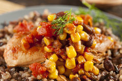 Southwestern Chicken with Rice and Corn Royalty Free Stock Photos