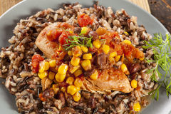 Southwestern Chicken with Rice and Corn Stock Photography