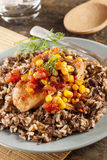 Southwestern Chicken with Rice and Corn Stock Image
