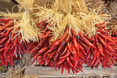 Southwestern Chilis Stock Images