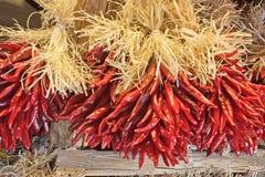 Southwestern Chilis stock images