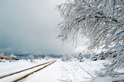 Southwestern Snowstorm Royalty Free Stock Photography