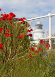Southwold Lighthouse and Poppies Stock Photo