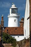 Southwold lighthouse and seabirds at English seaside resort royalty free stock images