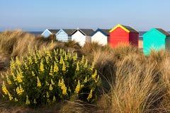 SOUTHWOLD, SUFFOLK/UK - 31. MAI: Bunte Strandhütten in Southwo Stockbild