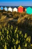 SOUTHWOLD, SUFFOLK/UK - 31. MAI: Bunte Strandhütten in Southwo Stockfotografie