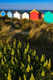 SOUTHWOLD, SUFFOLK/UK - MAY 31 : Colourful Beach huts in Southwo Stock Photography