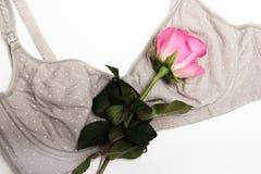 Soutien-gorge de soins pour des mères le soutien-gorge de mamans avec le bouton de rose d'A de couleur rose dans la langue des fl Photos libres de droits