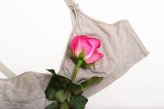 Soutien-gorge de soins pour des mères le soutien-gorge de mamans avec le bouton de rose d'A de couleur rose dans la langue des fl Photos stock