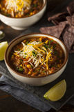 Soutwestern Santa Fe Soup Stock Photography