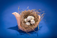 Souvenir bird with nes and eggs Royalty Free Stock Photo