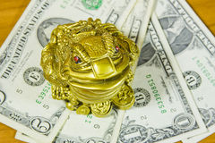 souvenir is a frog and dollars Stock Photography