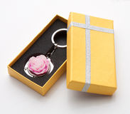 Free Souvenir Keychain Ring Royalty Free Stock Images - 21589079