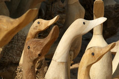 Souvenir picture of wood duck Stock Image