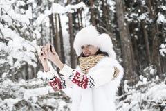 Souvenirs d'hiver Images libres de droits
