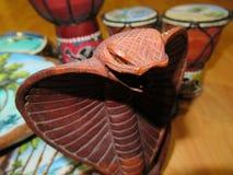 Souvenirs de Maldivien de serpent photos stock
