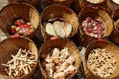 Souvenirs - seashells lying in baskets, Pomorie, Bulgaria, July 27, 2014 Stock Images