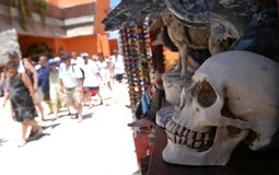 Souvernire-Schädel für Touristen lizenzfreie stockfotos