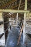 Birkenau läger Arkivbild