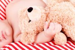 Sova behandla som ett barn gulliga små på rött, och vita band kudde Royaltyfria Foton