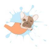 Sova den franska bulldoggen stock illustrationer