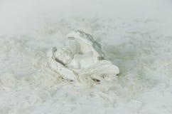 sova för ängel Arkivfoto