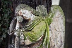 sova för ängel Arkivbild