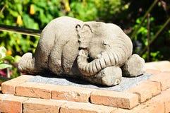 sova för elefant Arkivfoton